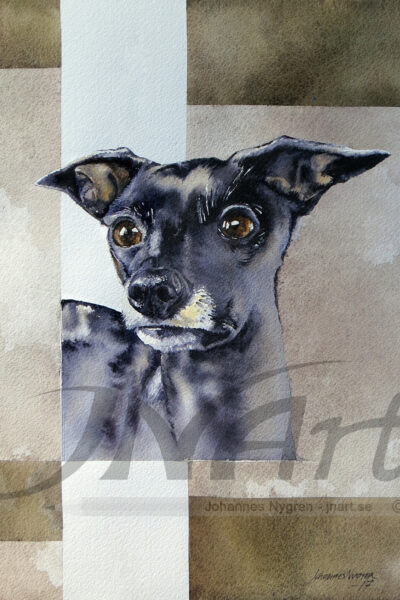 Hund - Dog - watercolor